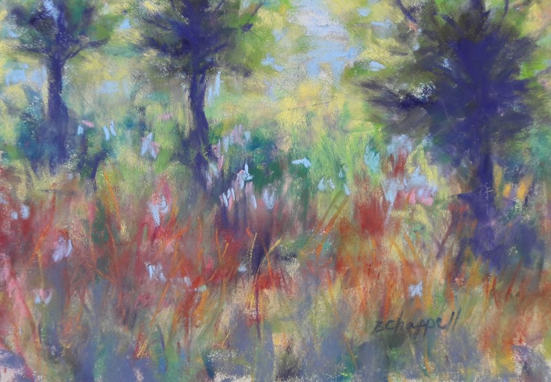 """Summer Colors"" original fine art by Becky Chappell"