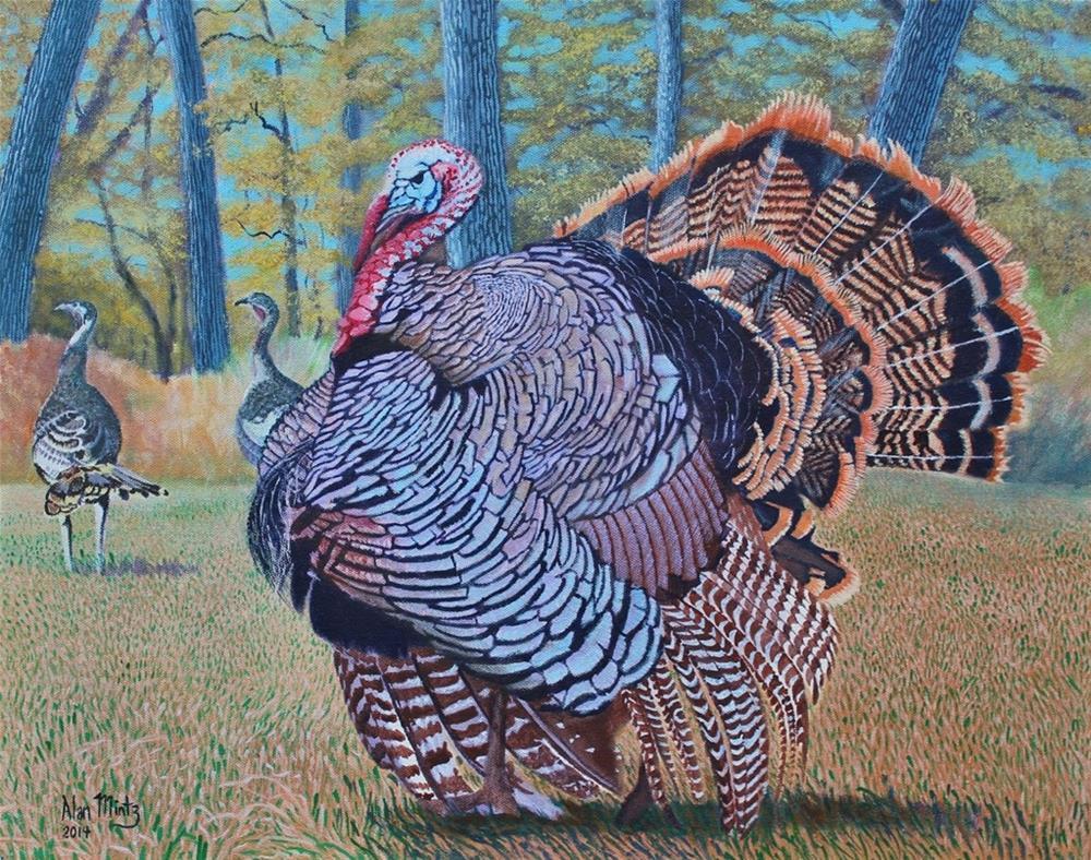 """""""Tom Turkey"""" original fine art by Alan Mintz"""