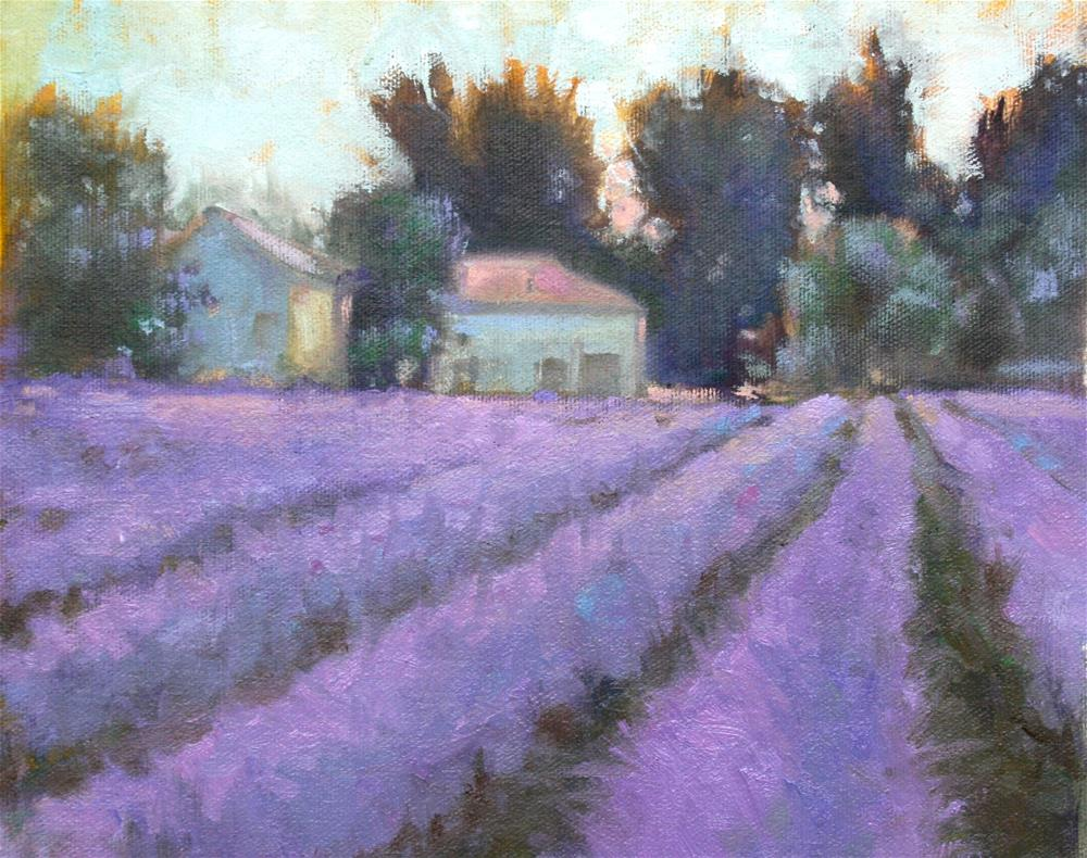 """Provence - Lavender Field"" original fine art by Jane Robertson"
