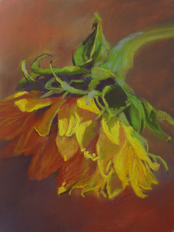 """Sunflower"" original fine art by Ruth Mann"