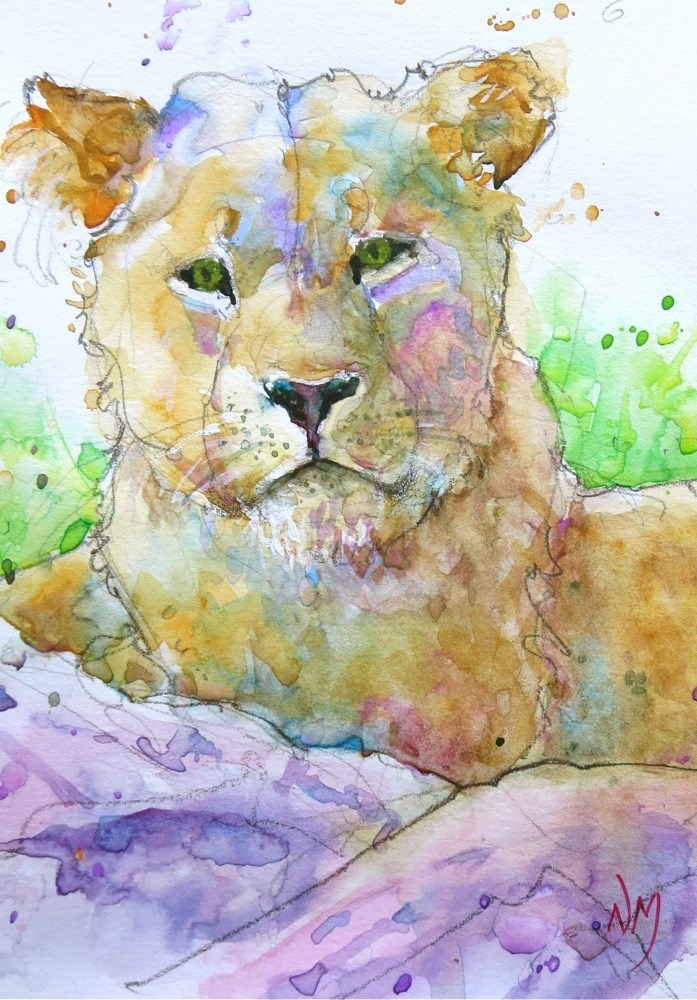 """portrait of a lion"" original fine art by Nora MacPhail"