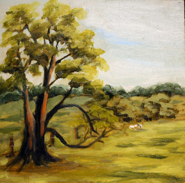 """Texas Grazing"" original fine art by Jane Frederick"
