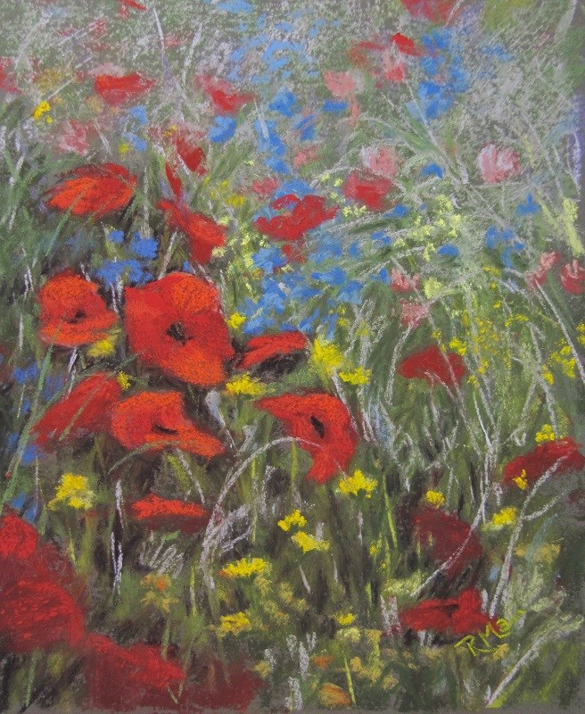 """Poppy Field"" original fine art by Ruth Mann"