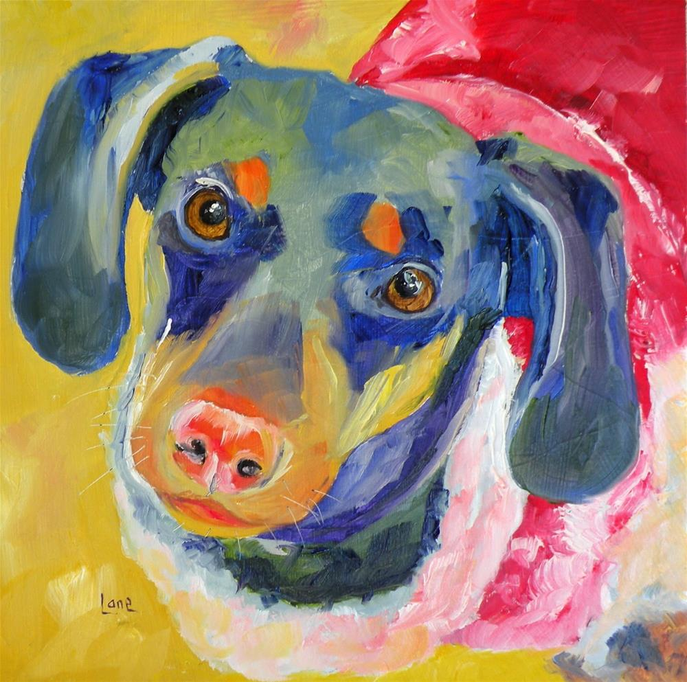 """CALI 20/100 OF 100 PET PORTRAITS IN 100 DAYS © SAUNDRA LANE GALLOWAY"" original fine art by Saundra Lane Galloway"