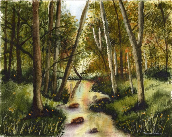 """Woodland Stream"" original fine art by Janet Graham"