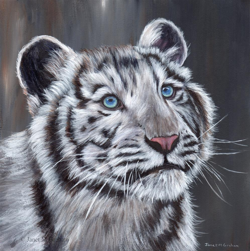 """White Tiger Cub"" original fine art by Janet Graham"