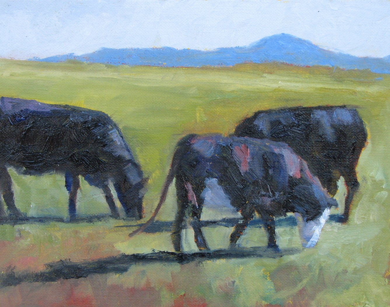 """Home On The Range"" original fine art by Pam Holnback"