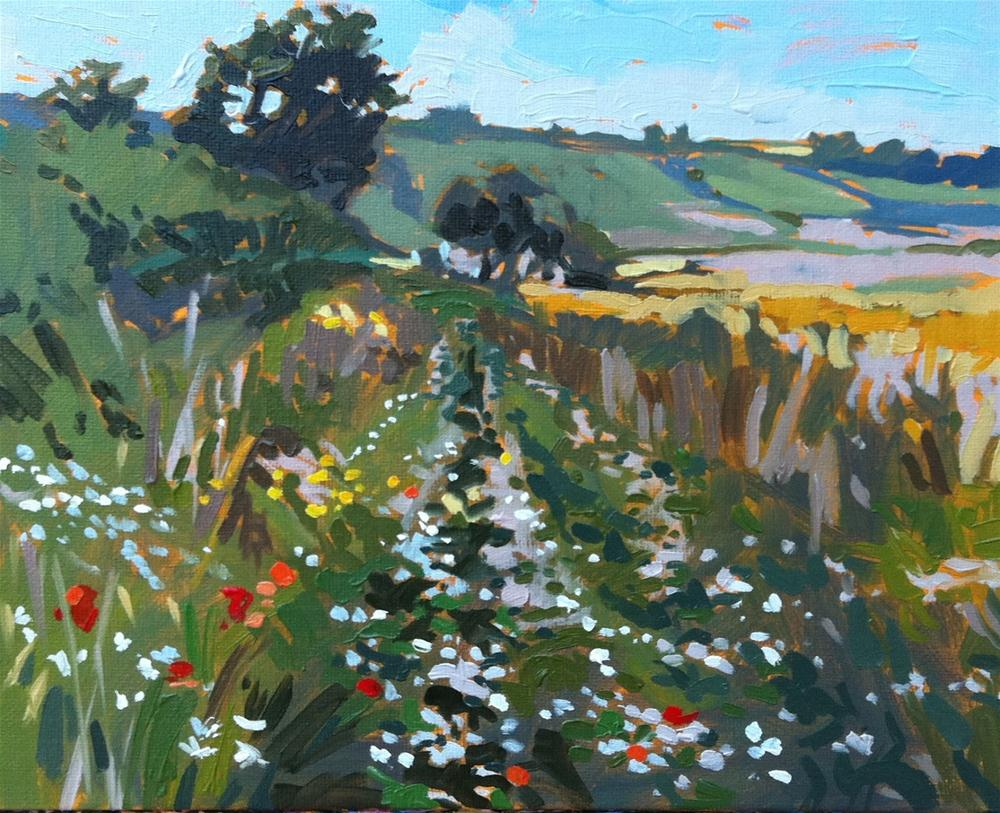 """Field with daisies"" original fine art by Haidee-Jo Summers"