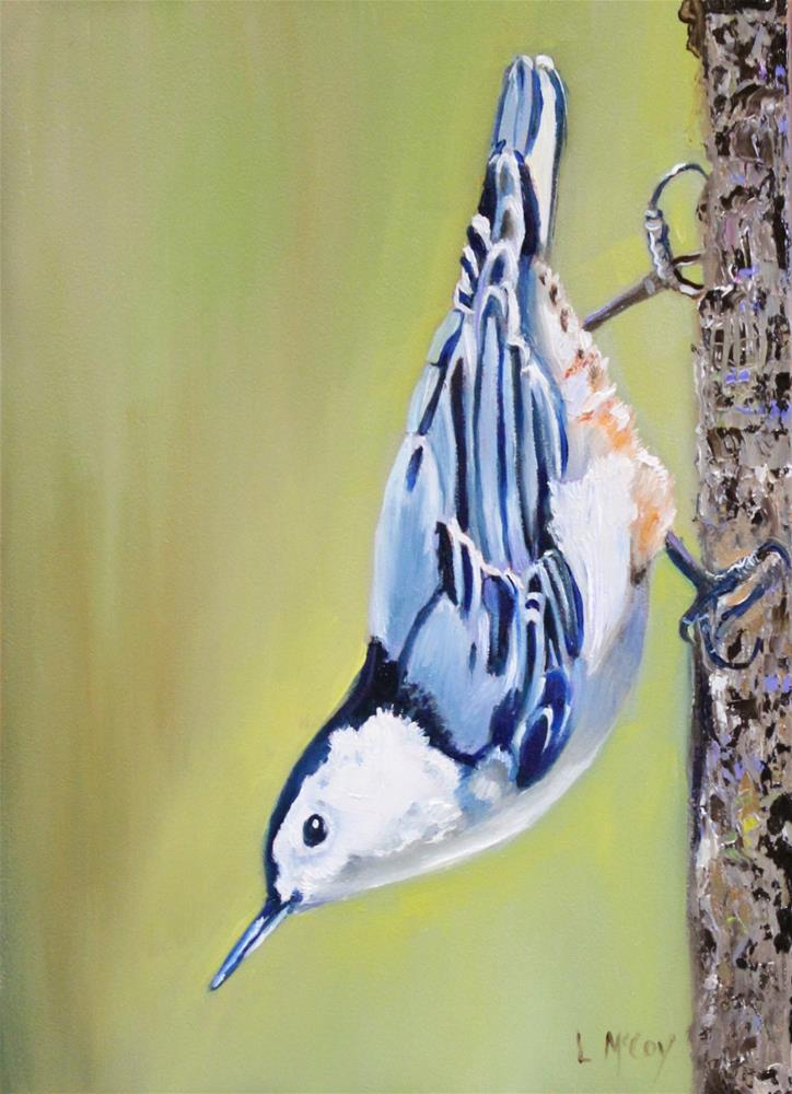 """Nuthatch Oil Painting by Linda McCoy"" original fine art by Linda McCoy"