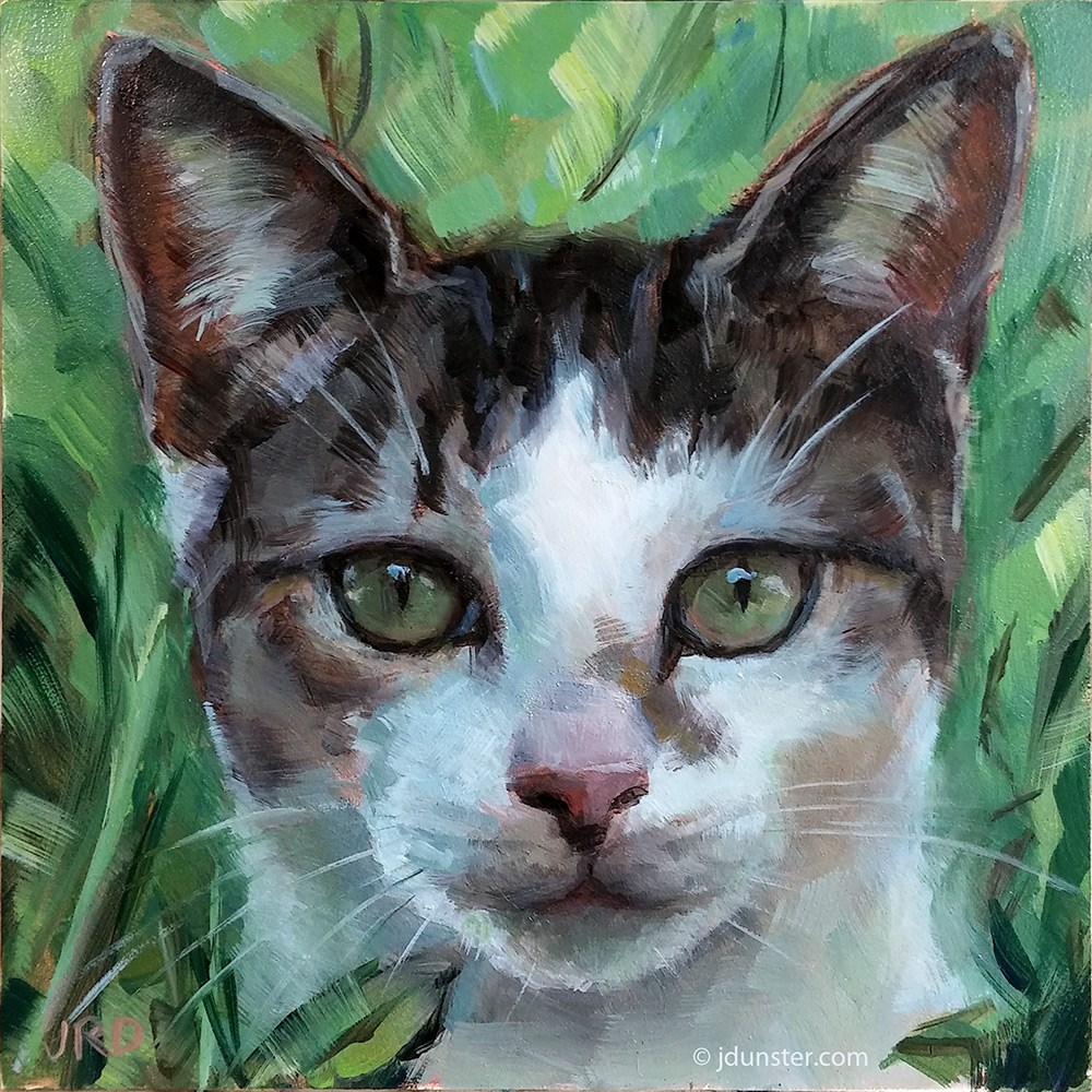 """Kitten in the Grass"" original fine art by J. Dunster"