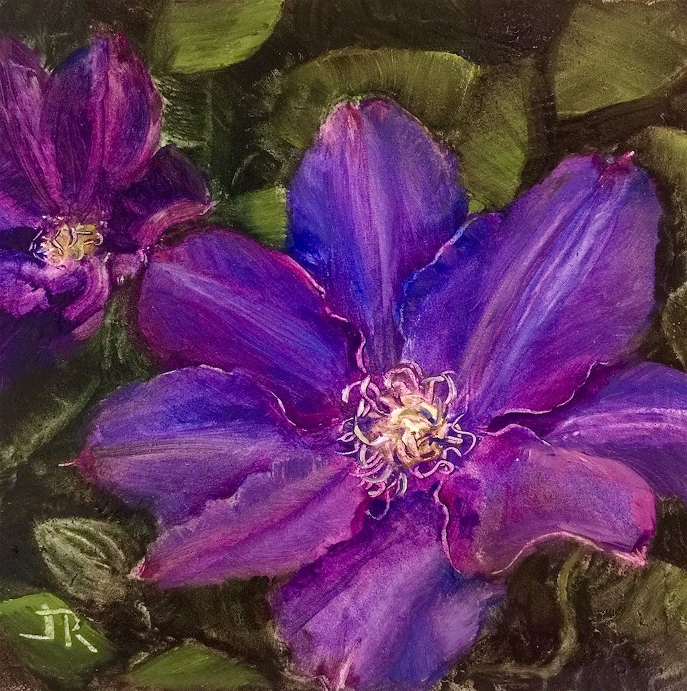 """Clematis"" original fine art by June Rollins"