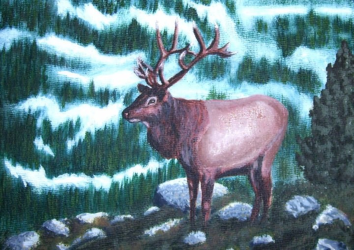 """Bull Elk"" original fine art by Amy VanGaasbeck"