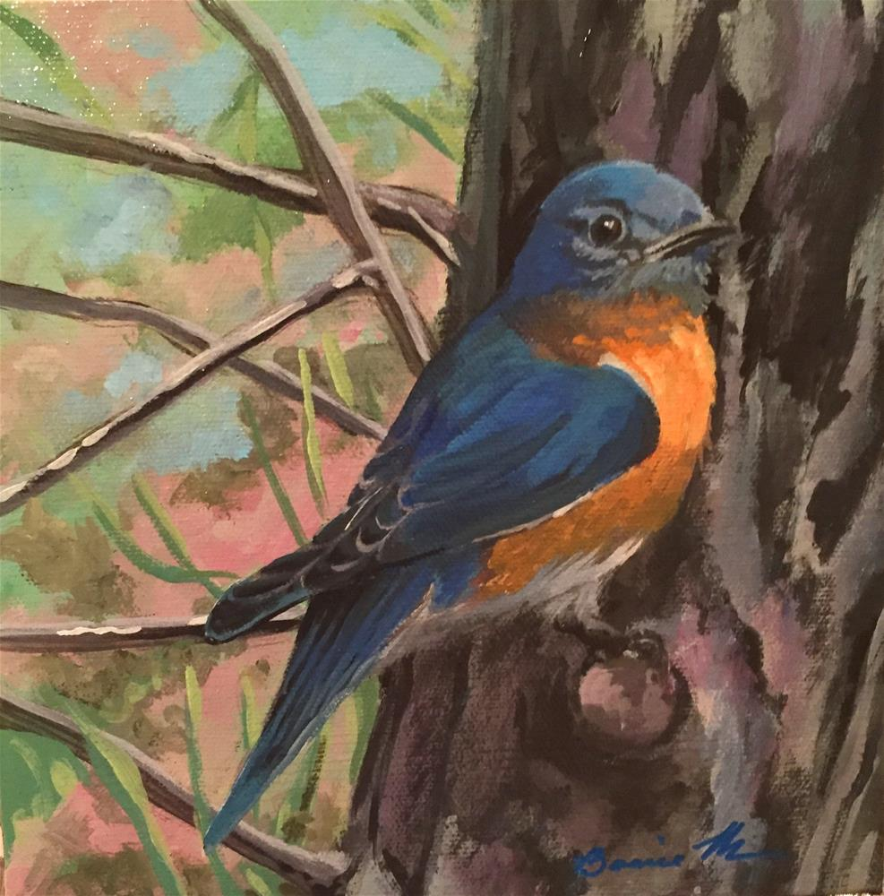 """Eastern Bluebird"" original fine art by Bonnie Masdeu"