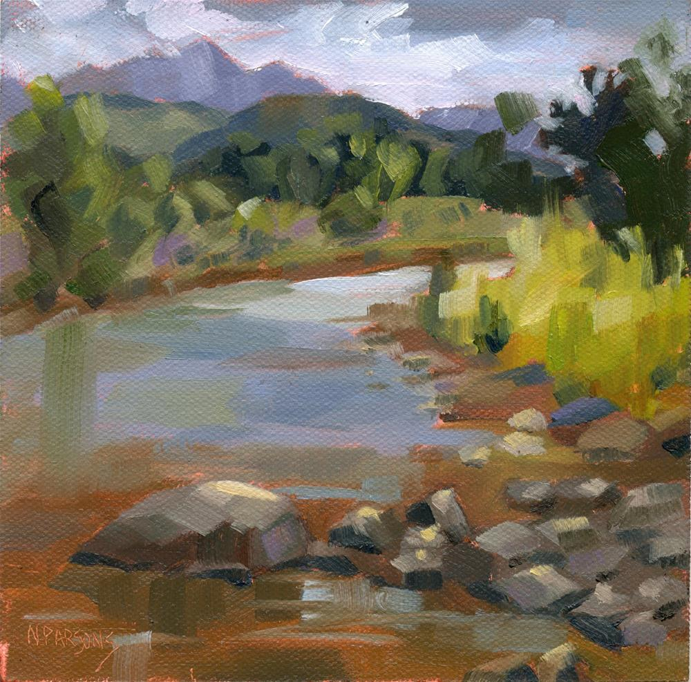 San Juan River original fine art by Nancy Parsons