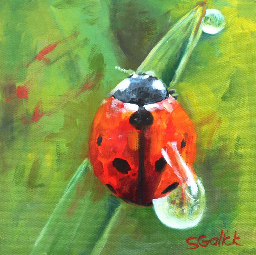 """Ladybug #3"" original fine art by Susan Galick"