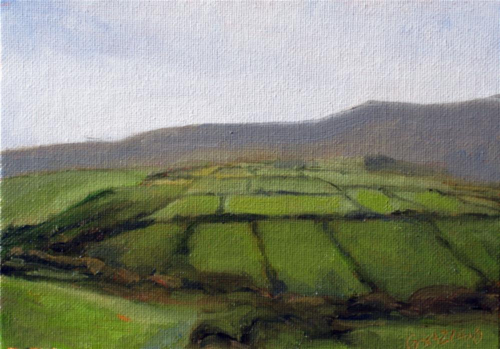 """fields of green"" original fine art by Dan Graziano"