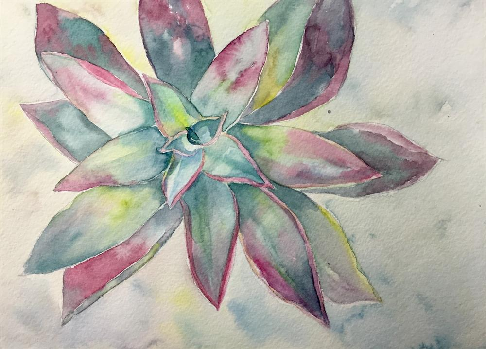 """Succulent1"" original fine art by Natasha Ramras"