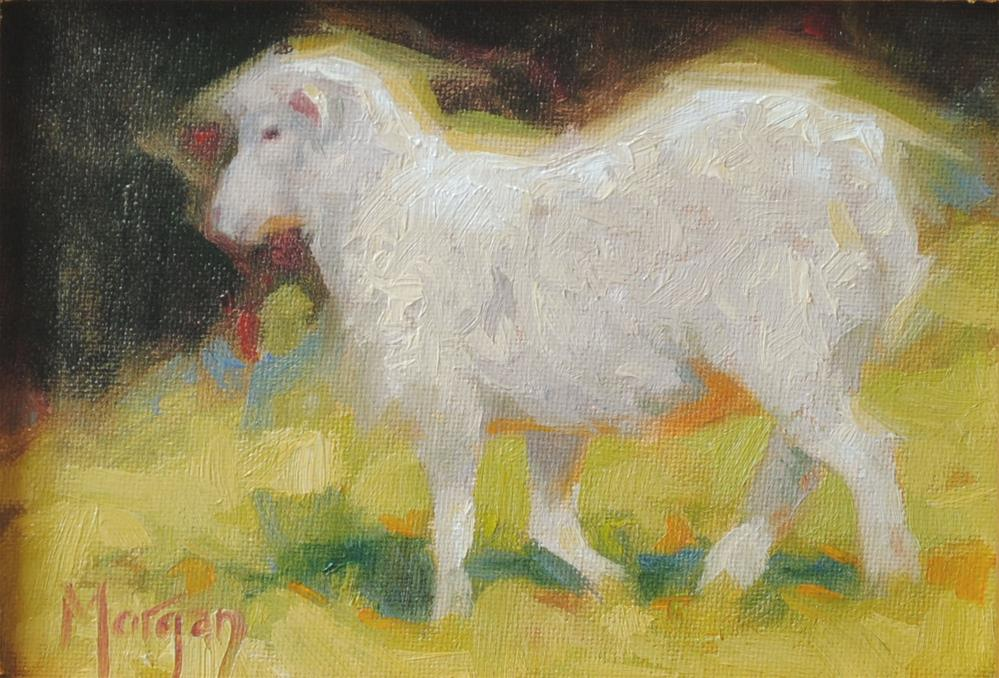 """Sheep Study, Randall Farms"" original fine art by Cecile W. Morgan"
