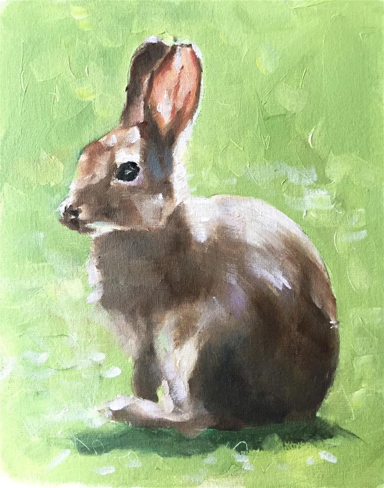 """Rabbit"" original fine art by James Coates"