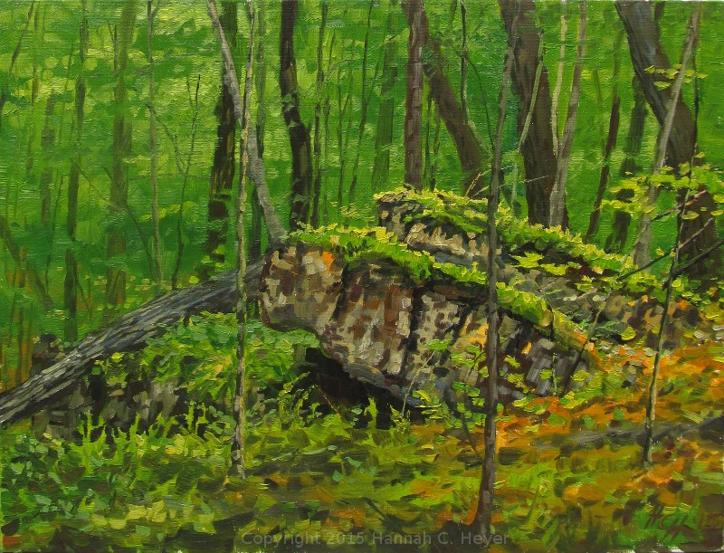 """Deep Woods"" original fine art by Hannah C. Heyer"