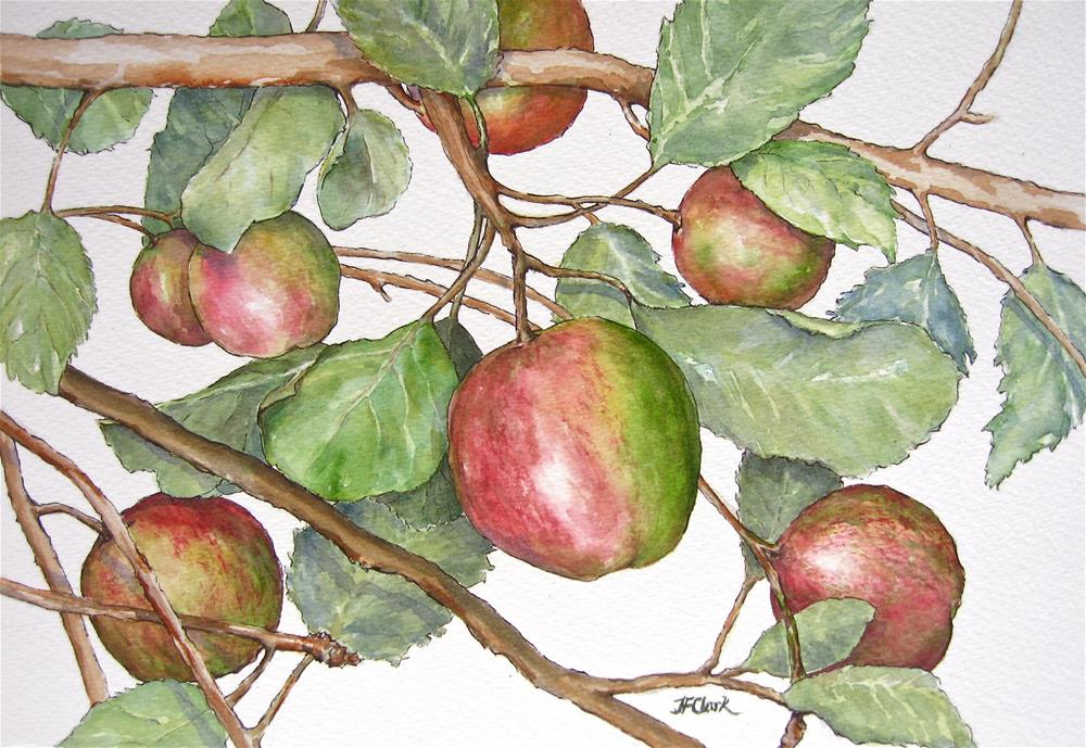 """Orchard Offering"" original fine art by Judith Freeman Clark"