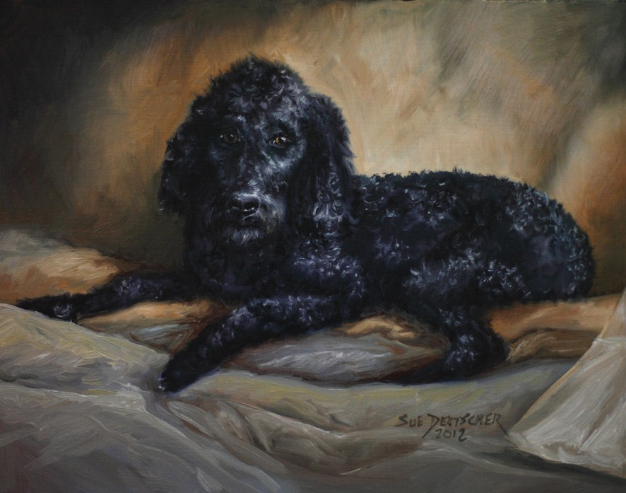"""""""Stanley"""" original fine art by Sue Deutscher"""