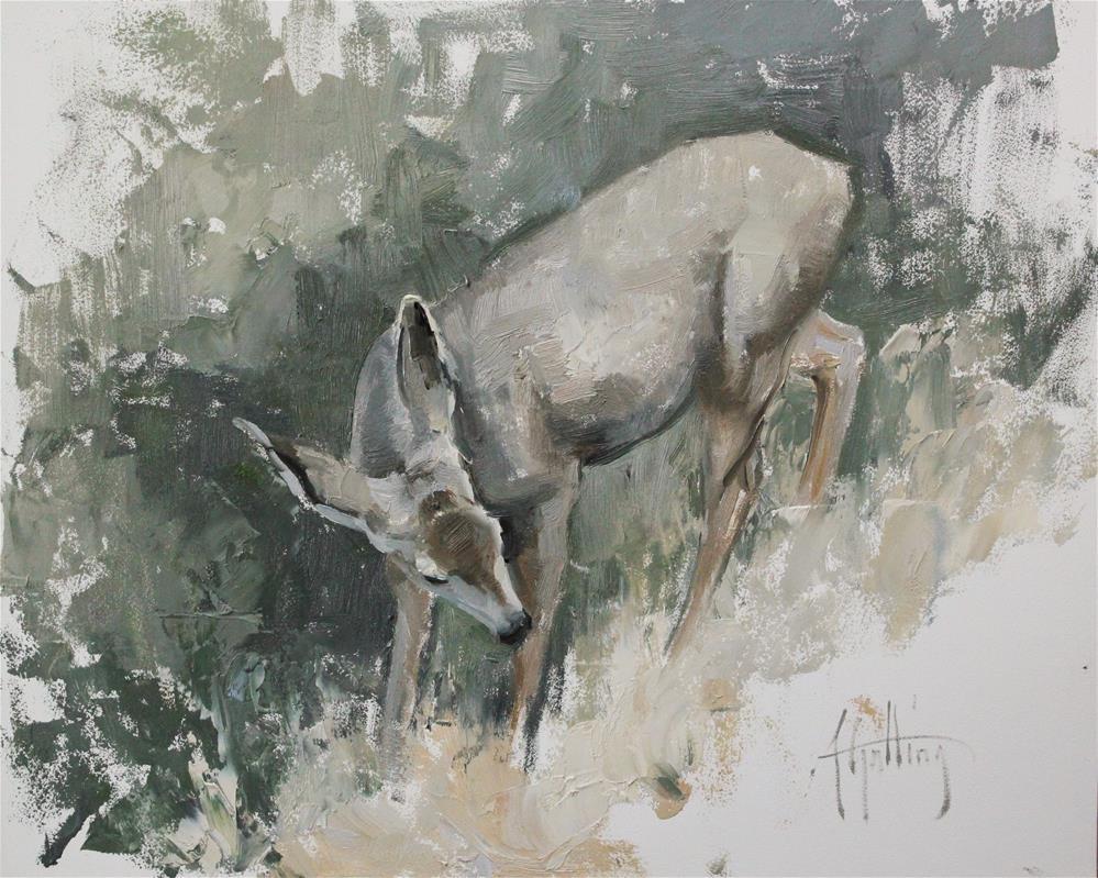 """""""Mule Deer Study #2"""" original fine art by Abigail Gutting"""