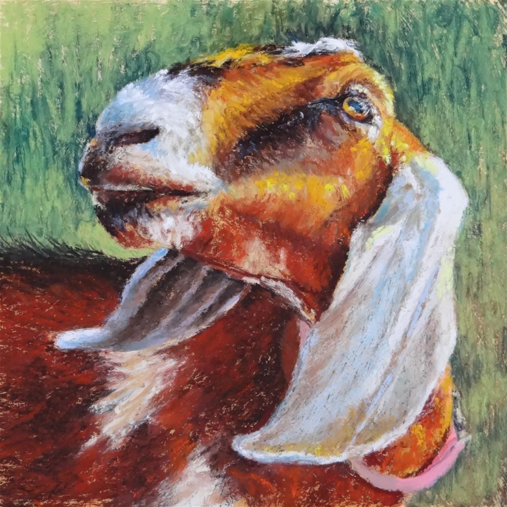 """Got Your Goat?"" original fine art by Denise Beard"