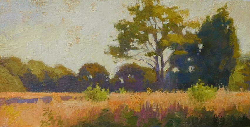 """Meadow near sunset"" original fine art by Kathy Weber"