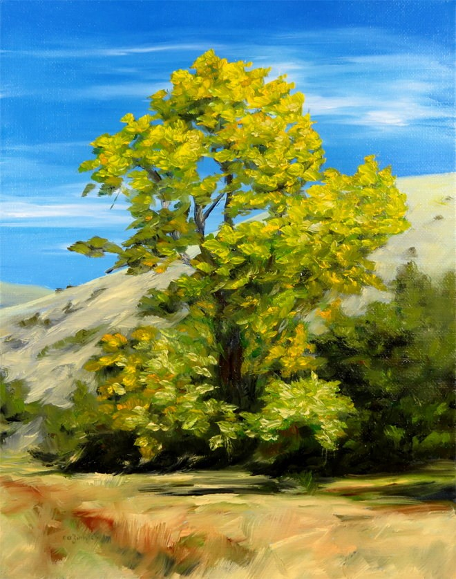 """Breezy Leaves"" original fine art by Carol Zirkle"
