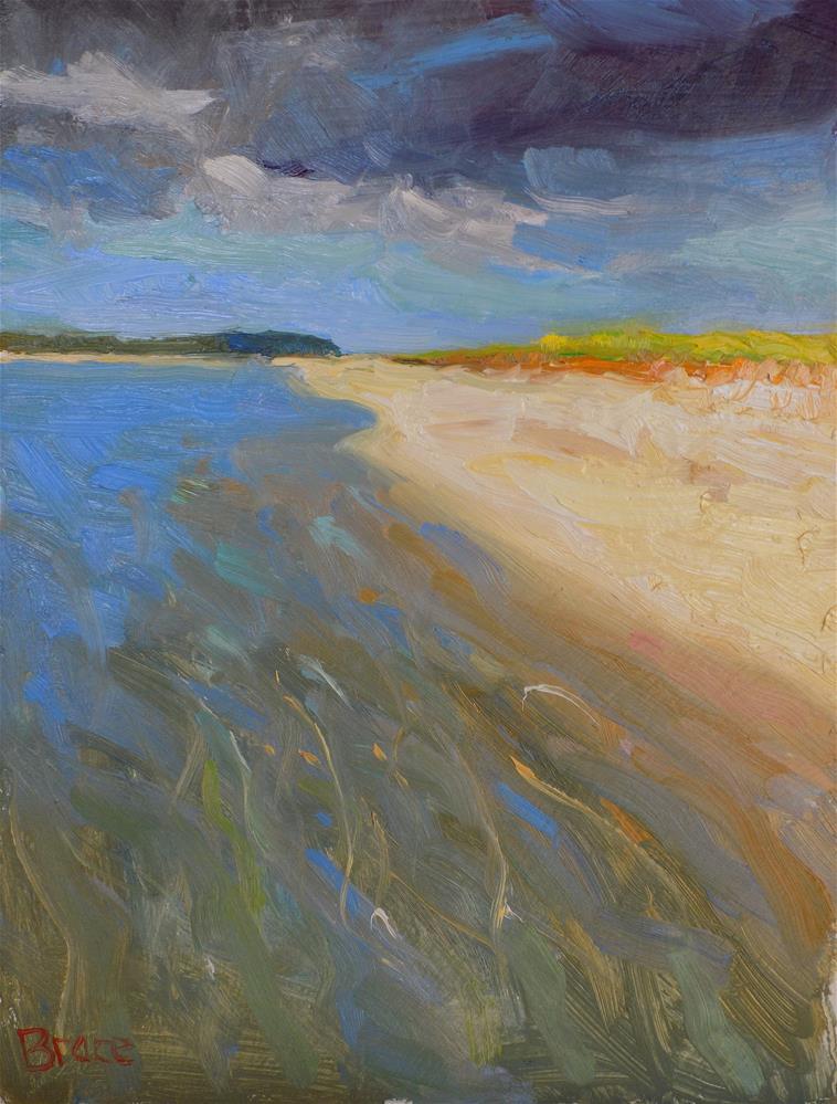 """Oh The Sand Bar"" original fine art by Rita Brace"