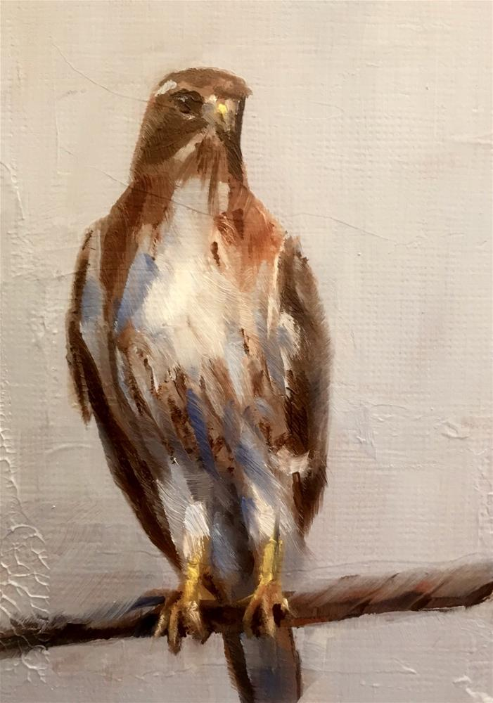 """Red-Tailed Hawk"" original fine art by Gary Bruton"