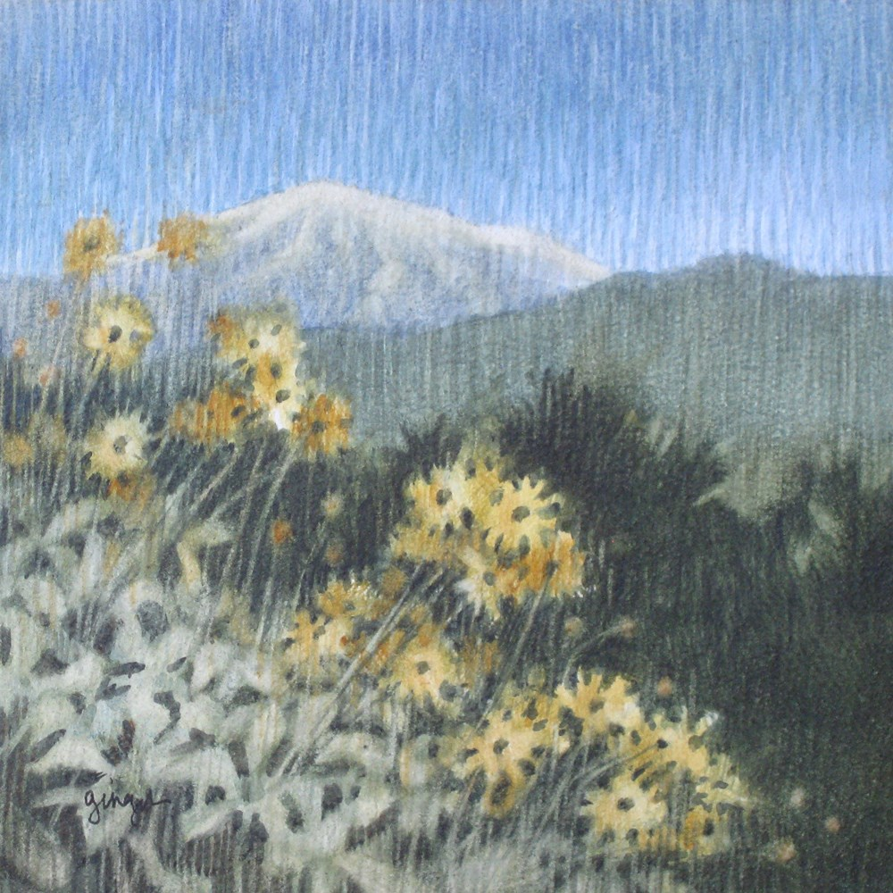 """View from Crafton Hills"" original fine art by Ginger Pena"