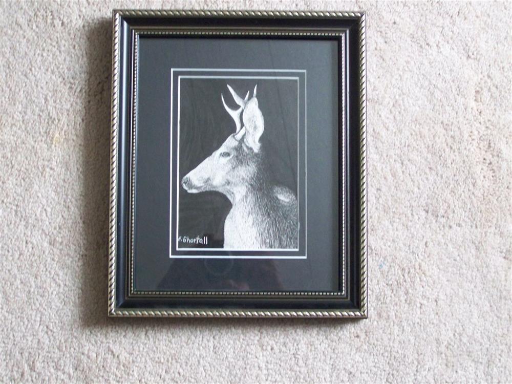 """""""Four-Pointer"""" original fine art by Elaine Shortall"""