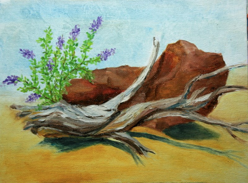 """High Desert Still Life - 1"" original fine art by Jean Nelson"