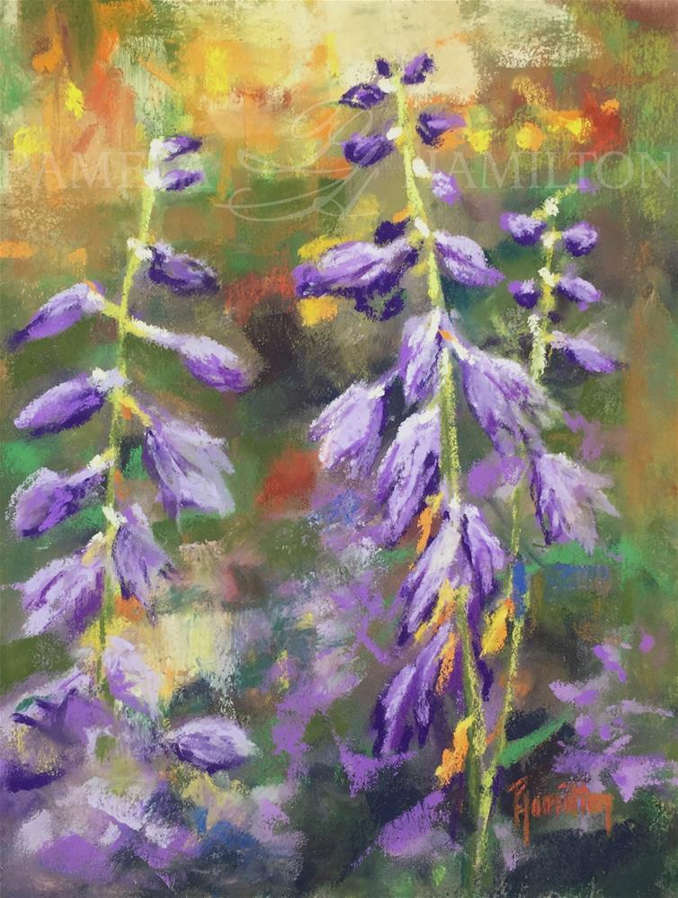 """Hosta Blooms"" original fine art by Pamela Hamilton"