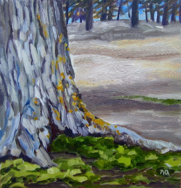 """Lichen and Moss, Waskesiu"" original fine art by Nicki Ault"