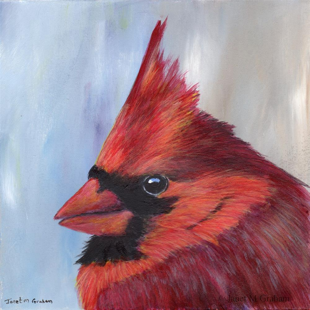 """Northern Cardinal (Male)"" original fine art by Janet Graham"