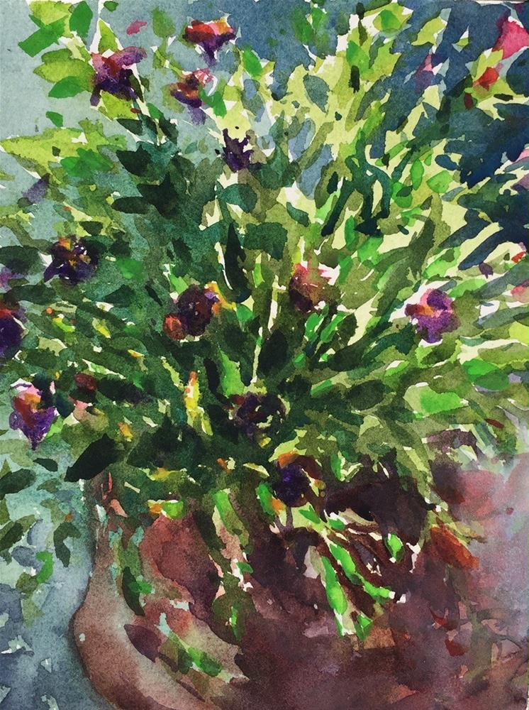 """Potted Plant in Afternoon Sun"" original fine art by Laurie Maher"