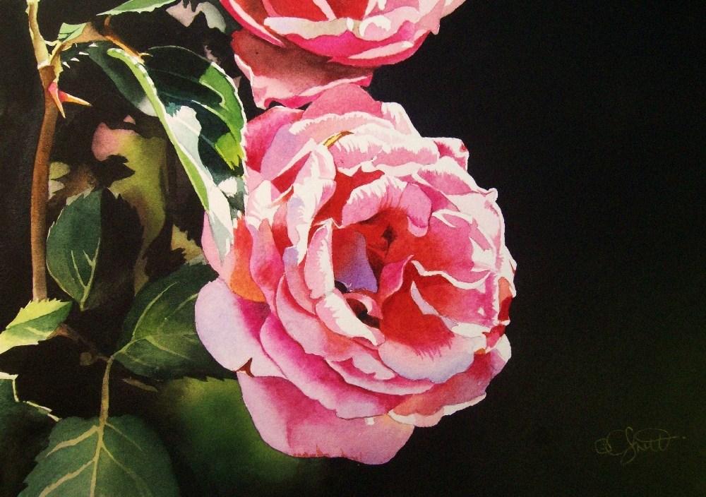 """Summer Morning"" original fine art by Jacqueline Gnott, whs"