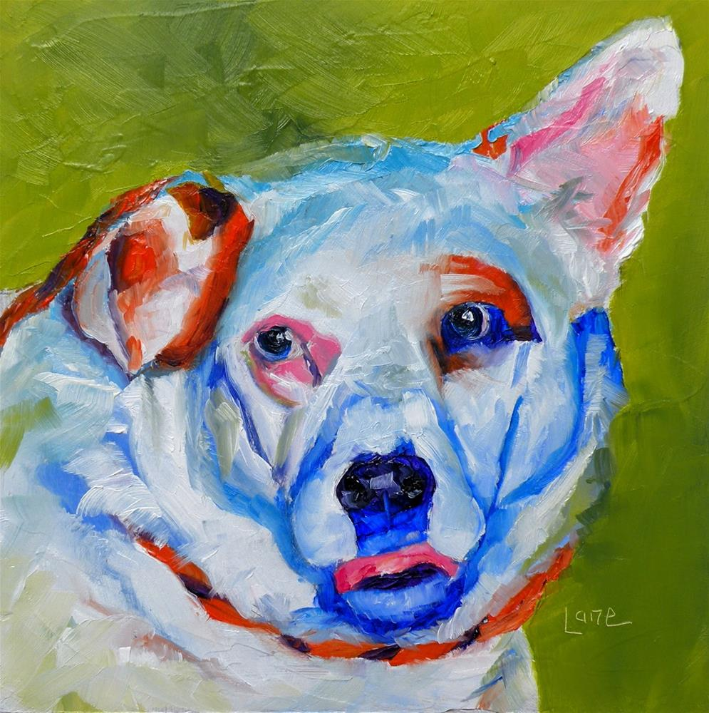 """DOOLIN 52/101 OF 101 PET PORTRAITS IN 101 DAYS © SAUNDRA LANE GALLOWAY"" original fine art by Saundra Lane Galloway"