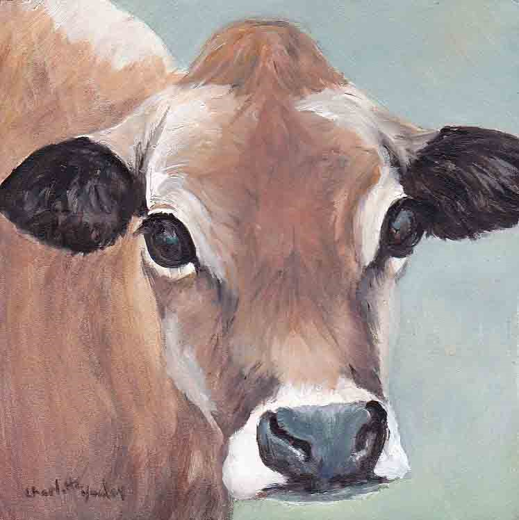 """Jersey Cow"" original fine art by Charlotte Yealey"
