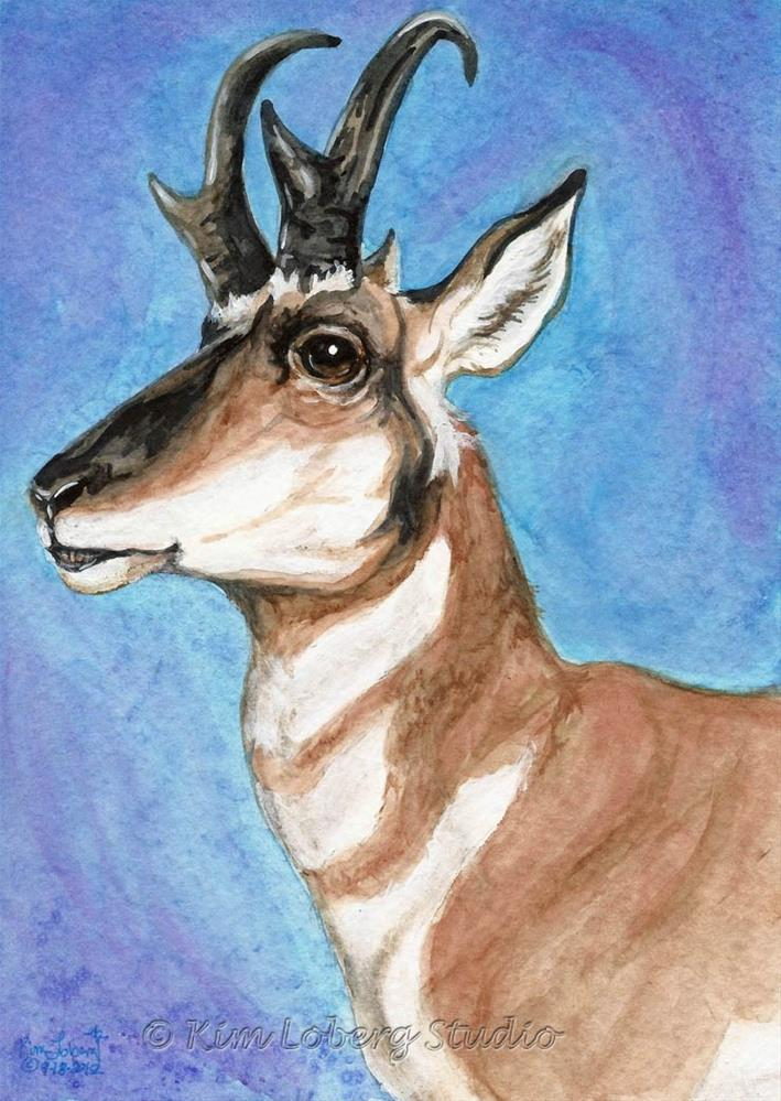 """Majestic Pronghorn"" original fine art by Kim Loberg"