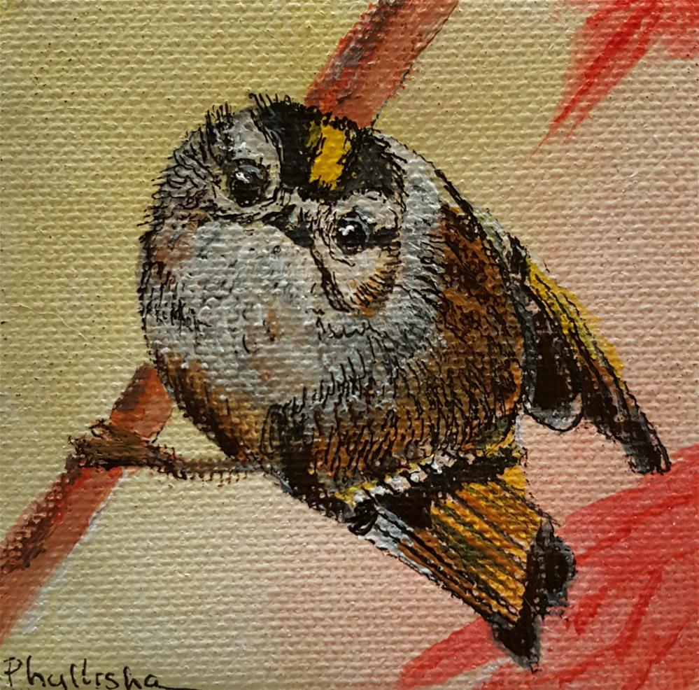 """Gold crowned Kinglet"" original fine art by Phyllisha Hamrick"