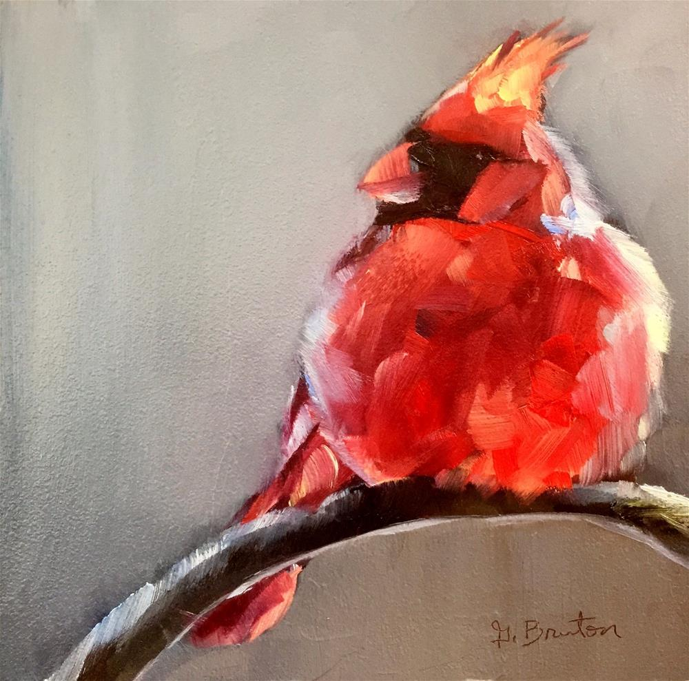 """Fluffy Cardinal"" original fine art by Gary Bruton"