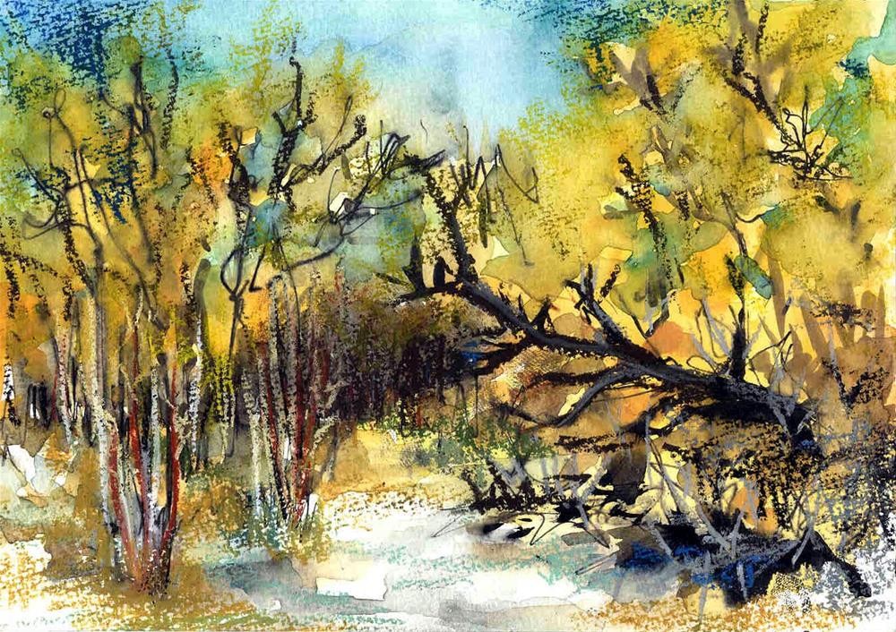 """Eden Hot Springs, Arizona"" original fine art by Anne Ducrot"