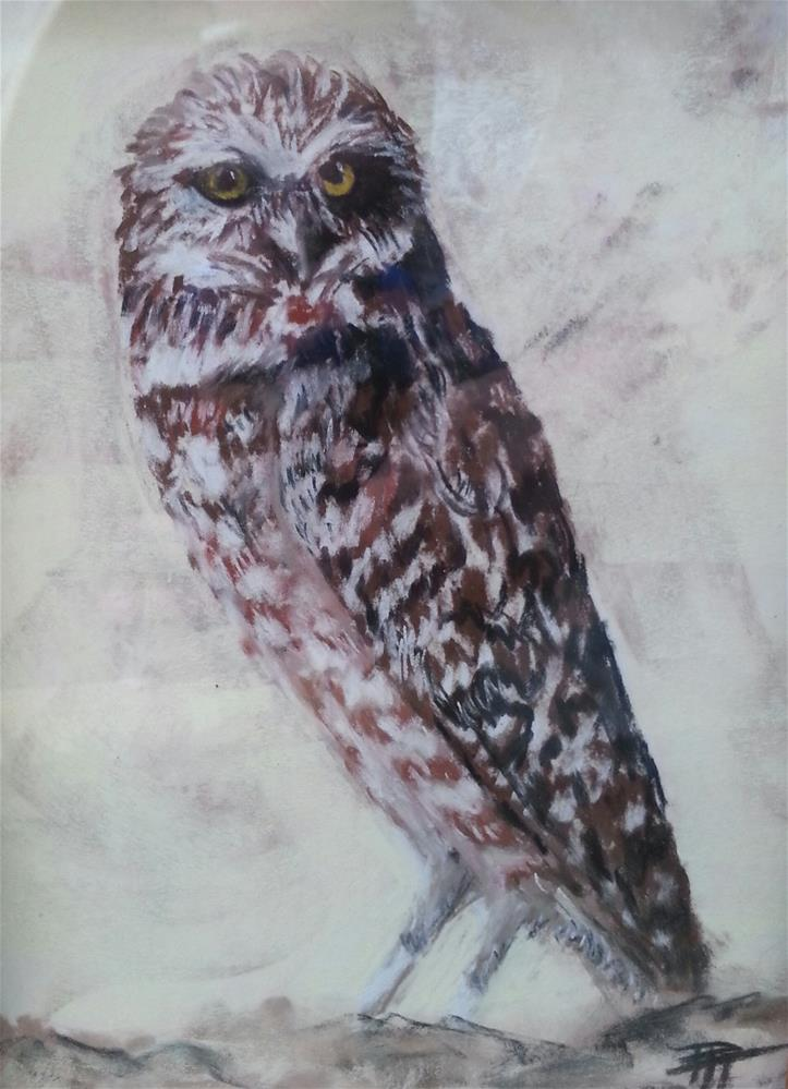 """Burrowing Owl"" original fine art by Phyllisha Hamrick"