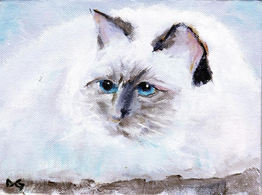 """Lilac Point Ragdoll Cat"" original fine art by Dave Gehman"