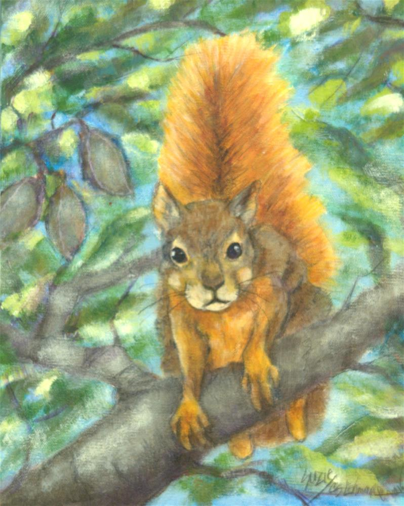 """Curious Squirrel"" original fine art by Carla Ridener"