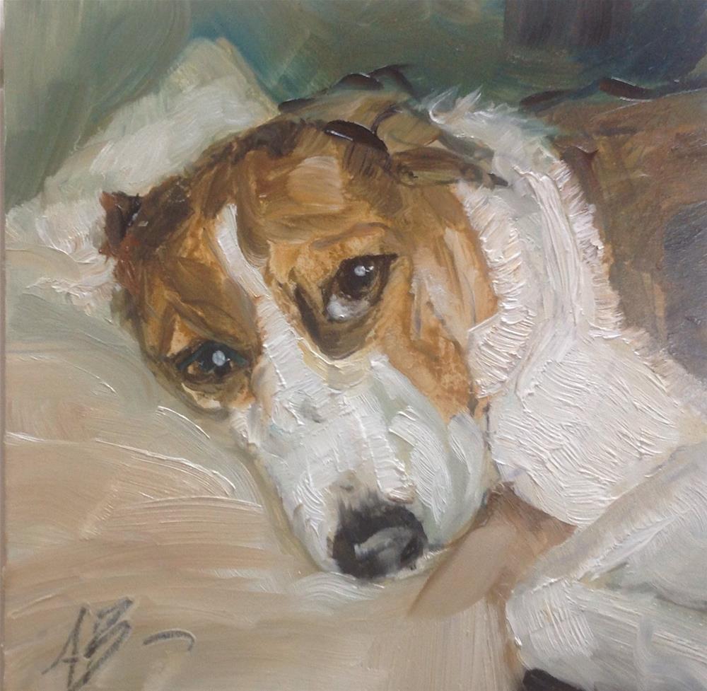"""Bandit"" original fine art by Annette Balesteri"
